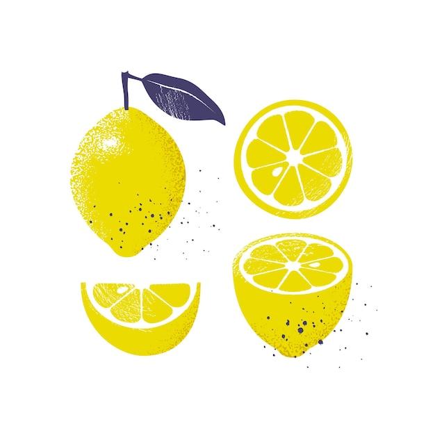 Inzameling van citroenvruchten die op witte achtergrond worden geïsoleerd. plakjes en geheel fruit met een blad. illustratie.
