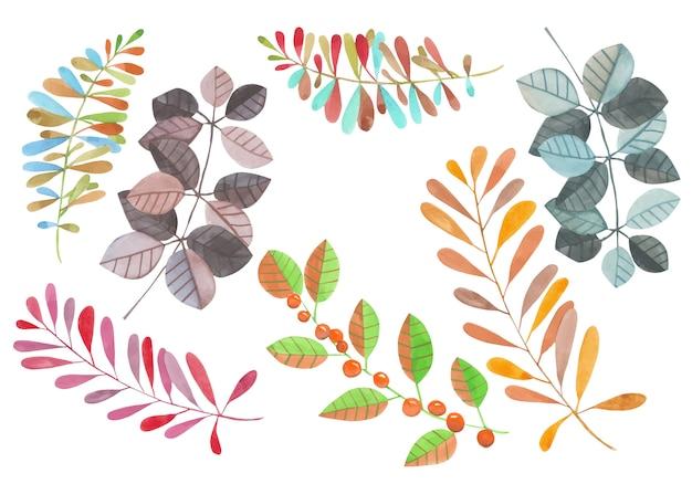 Inzameling van de waterverf abstracte takken met bladeren