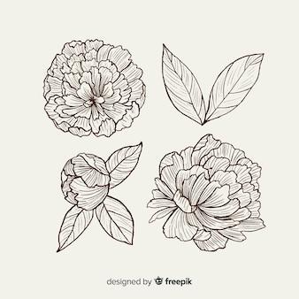 Inzameling van hand getrokken pioenbloemen