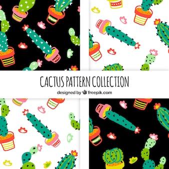Inzameling van handgetekende cactuspatroon