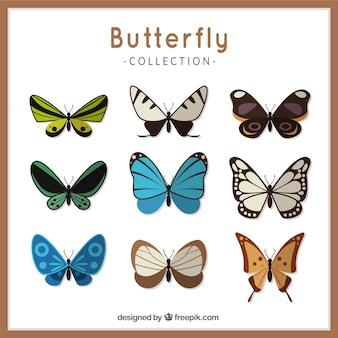 Inzameling van kleurrijke vlinders in vlakke stijl