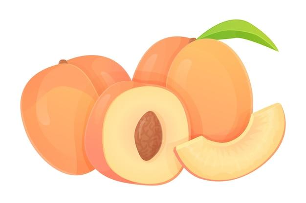 Inzameling van perziken in verschillende vormen, plak, helft met zaad, heel fruit