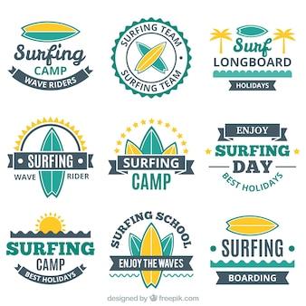 Inzameling van uitstekende surf sticker