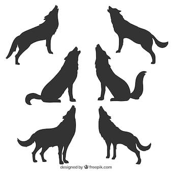 Inzameling van wolfsilhouetten