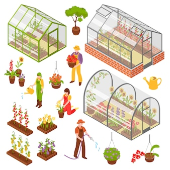 Isometrische 3d greenhouse icon set
