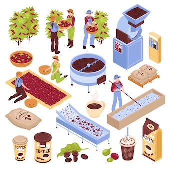 Isometrische koffieproductieset met geïsoleerde s die verschillende stadia van koffieboonproductie met mensen vertegenwoordigen