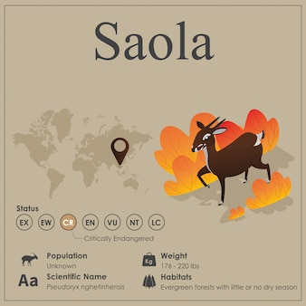Isometrische saola infographic