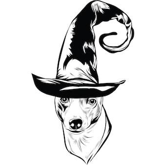 Italiaanse windhond met heksenhoed voor halloween