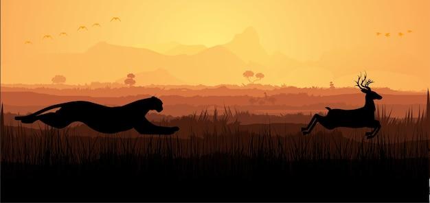 Jachtluipaard op jacht op herten