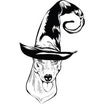 Jack russel terrier-hond met heksenhoed voor halloween