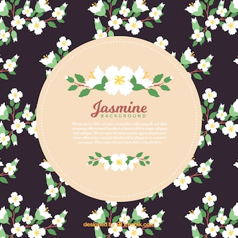 Jasmijn decoratieve achtergrond