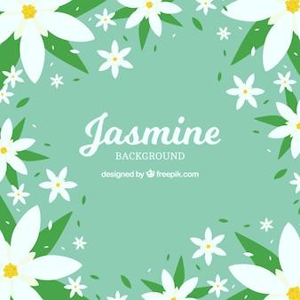 Jasmine achtergrond in plat ontwerp
