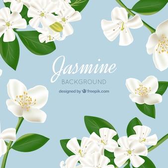 Jasmine achtergrond in realistische stijl