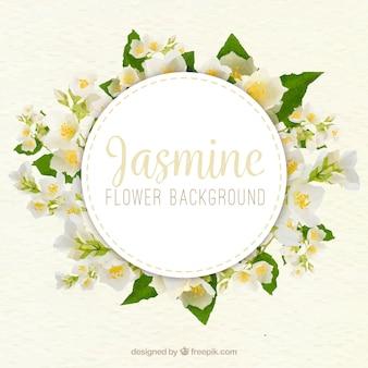 Jasmine achtergrond met realistische stijl