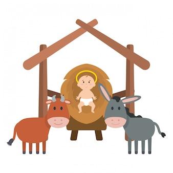 Jezus baby in stal met muilezel en os