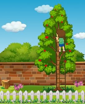 Jongen die appelboom beklimt