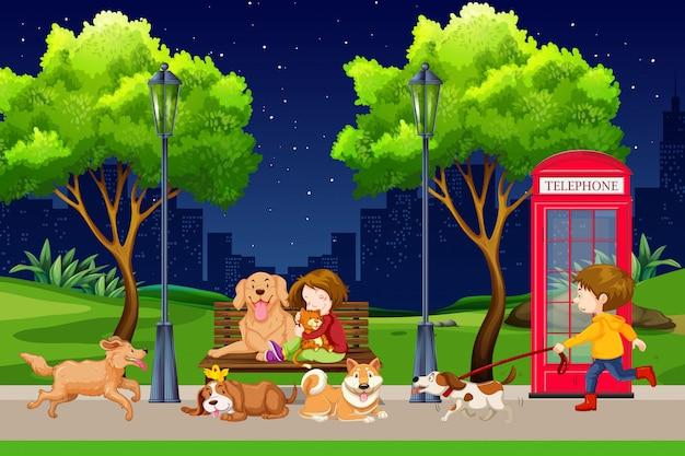 Jongen die met hond in park loopt