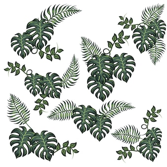 Jungle groen tropisch blad