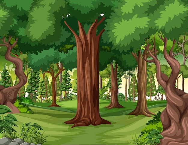 Jungle scene met liaan en veel bomen