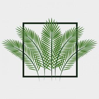 Jungle verlaat patroon geïsoleerd pictogram ontwerp