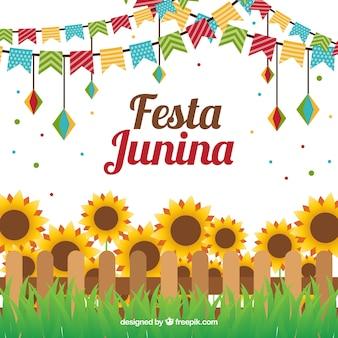 Junina feest zonnebloemen achtergrond in plat ontwerp