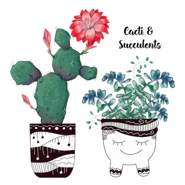 Kaart met geplaatste cactussen en succulents