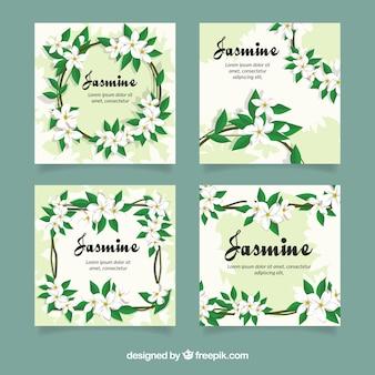 Kaartverzameling met moderne jasmijnbloemen