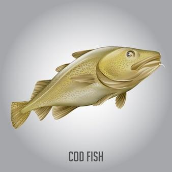 Kabeljauw vis vectorillustratie