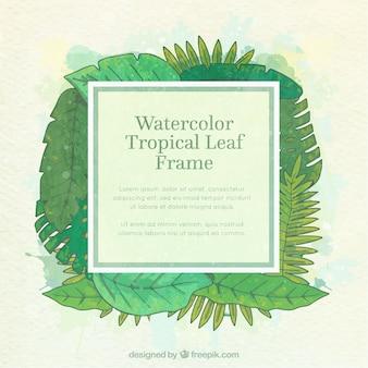 Kader met tropische bladeren van waterverf