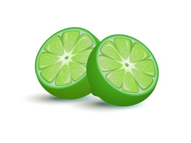 Kalk fruit cartoon vectorillustratie exotische citrus vol vitamine