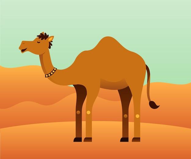 Kameel met woestijn achtergrond