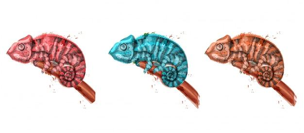Kameleon aquarel illustratie
