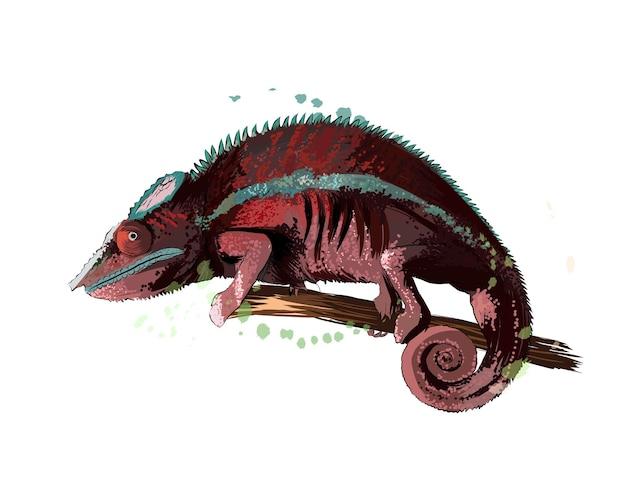 Kameleon uit een scheutje aquarel