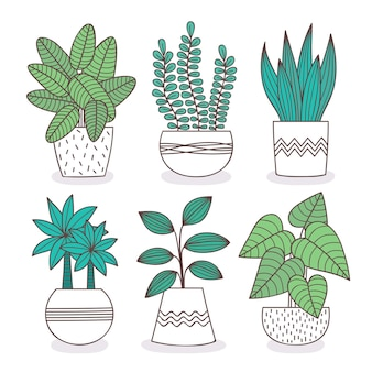 Kamerplant collectie illustratie