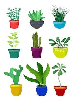 Kamerplant concept. cartoon kamerplanten in kleurrijke potten.