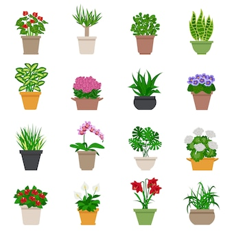 Kamerplant icons set