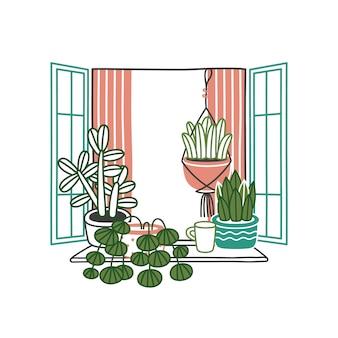 Kamerplanten en bloemen in potten in open raam