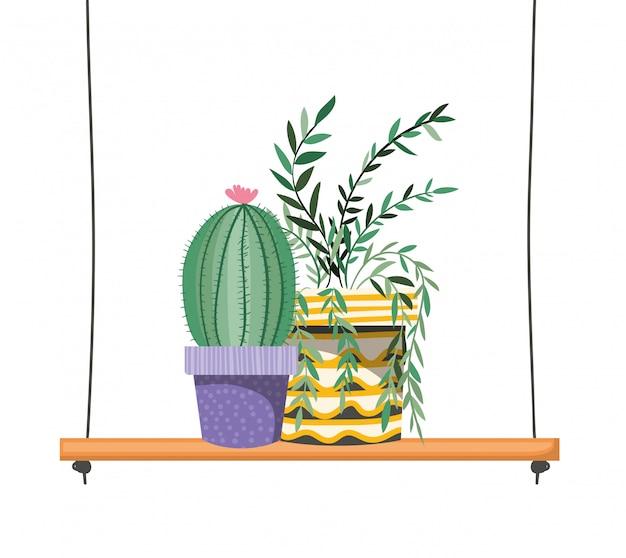Kamerplanten met ingemaakt op plank