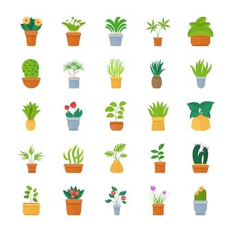 Kamerplanten platte vector icon collection