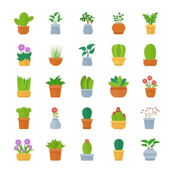 Kamerplanten platte vector icon pack