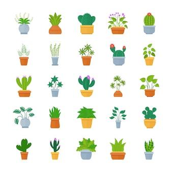 Kamerplanten platte vector icon set