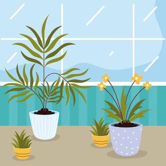 Kamerplanten verzorgen in huis