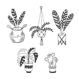 Kamerplantendoodle vector set geïsoleerd op witte achtergrond monstera palm cosy home plants