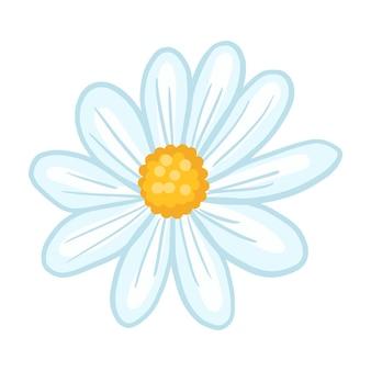 Kamille close-up geïsoleerd op een witte achtergrond. lentebloem in doodle stijl voor elk doel. vector illustratie.