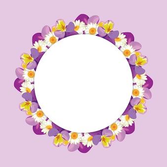 Kamille en viooltjes frame op roze paarse achtergrond