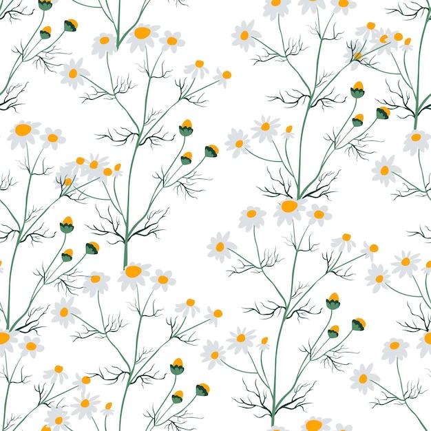 Kamillebloem met bloesem naadloos patroon