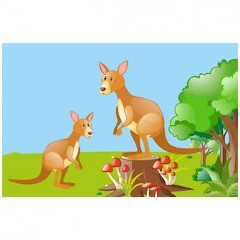 Kangaroos achtergrond ontwerp
