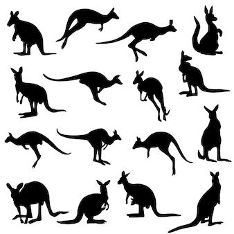 Kangoeroe dierlijke australië silhouet illustraties