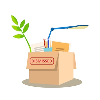 Kartonnen doos volledige persoonlijke bezittingen.