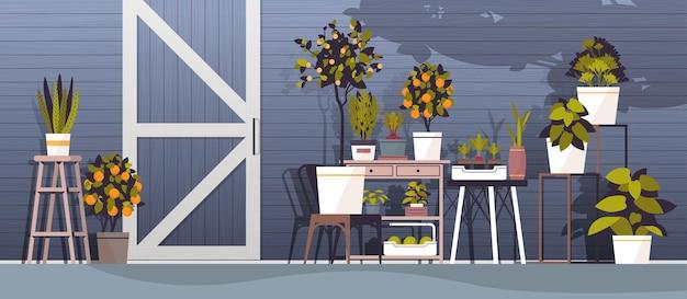Kas potplanten op planken tuinieren concept